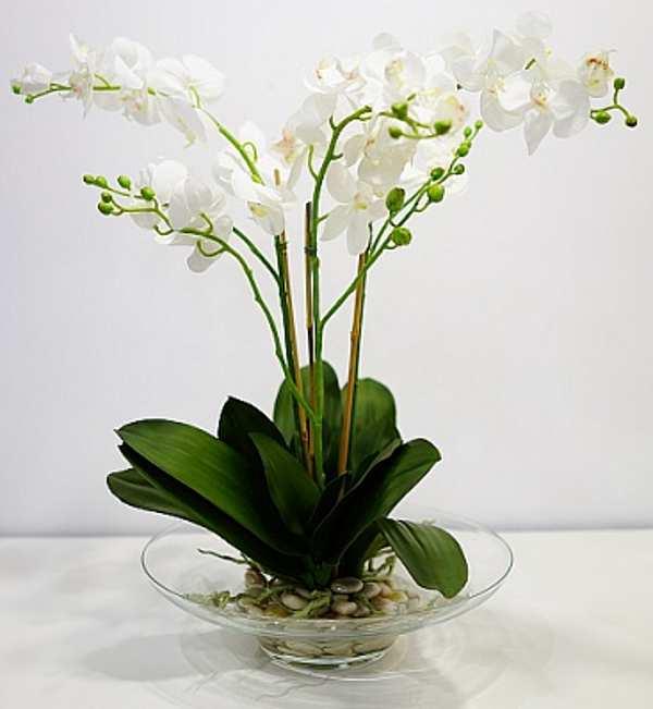 Композиция с орхидеями VG